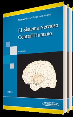 El Sistema Nervioso Central Humano