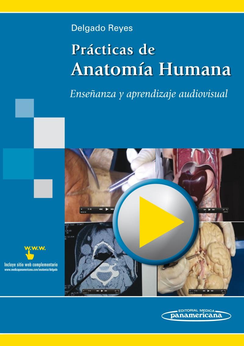 Prácticas de Anatomía Humana: Enseñanza y aprendizaje audiovisua