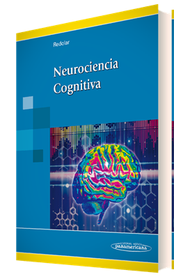 Purves Neurociencia Pdf