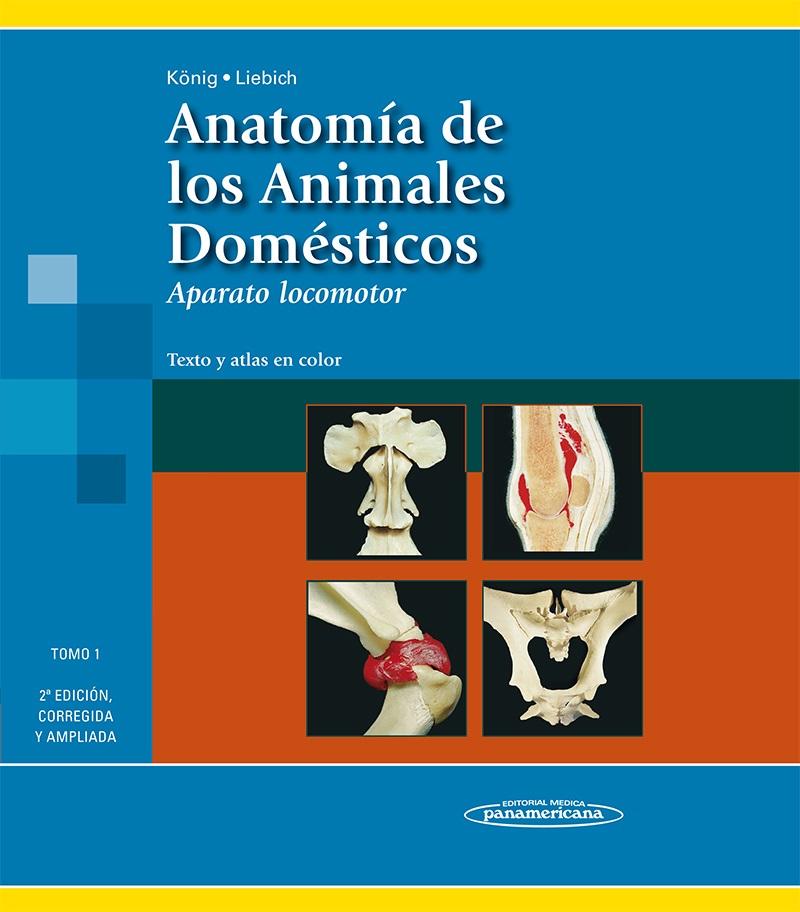 Colección König. Anatomía de los Animales Domésticos: (2 Tomos)