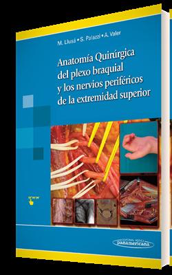Anatomía Quirúrgica del plexo braquial y nervios periféricos de la extremidad superior