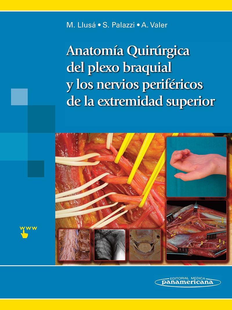 Anatomía Quirúrgica del plexo braquial y nervios periféricos de