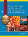 Curso de Anatomía del Plexo Braquial y Nervios Periféricos de la Extremidad Superior