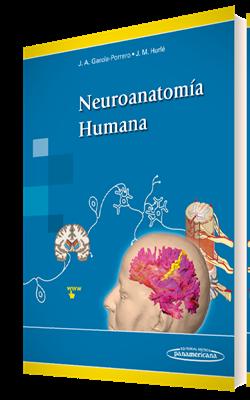 descargar afifi neuroanatomia pdf