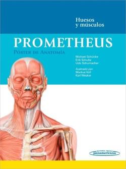 Prometheus. Póster de Anatomía