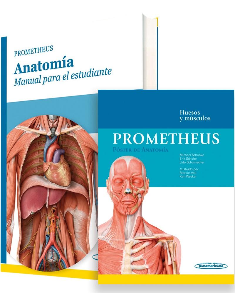 Pack Prometheus Anatomía: Manual para el estudiante y Póster