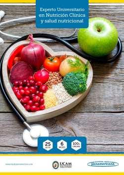 Experto Universitario en Nutrición Clínica y Salud Nutricional