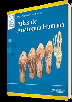 Atlas De Anatomía Humana De Mark Nielsen Editorial Médica Panamericana
