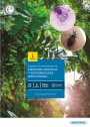 Experto Universitario en Medicina Tropical y Enfermedades Infecciosas