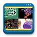 Libro de Fundamentos de Hematología