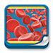 Formación - Hematología