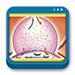 Libro de Gases Sanguíneos, Fisiología de la respiración e  Insuficiencia respiratoria aguda