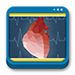 Libro de Electrocardiografía