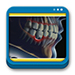 Libro de Periodontología e Implantología