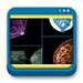Libro de Manual de Radiología Mamaria