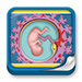 Formación - Embriología Humana y Biología del Desarrollo