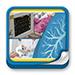 Formación - Manual de Ventilación Mecánica para Enfermería