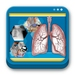 Libro de Sistema Respiratorio