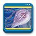 Libro de Microbiología y Parasitología Humana