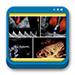 Libro de Doppler en Medicina Fetal