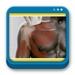 Libro de Ecografía Musculoesquelética Esencial (incluye versión digital)